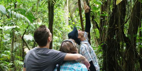 Auf Rundreisen in Kleingruppen Costa Rica erleben